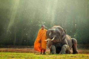 Tailandia de Norte a Sur