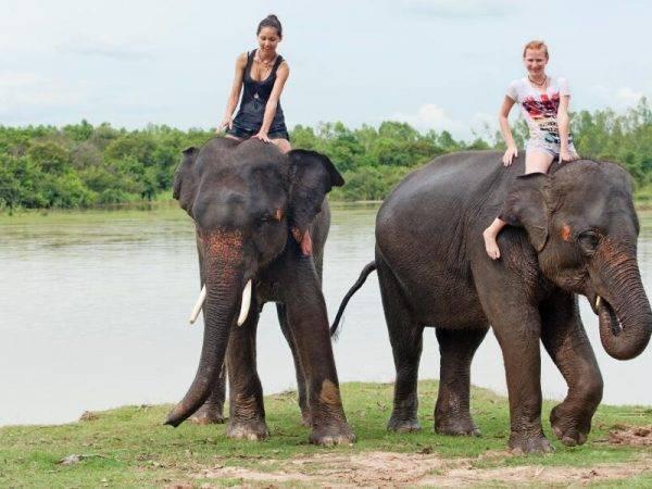Viajes de aventura en Tailandia - Excursion en elefantes