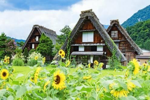 Que ver en Japón - Visitar Shirakawago