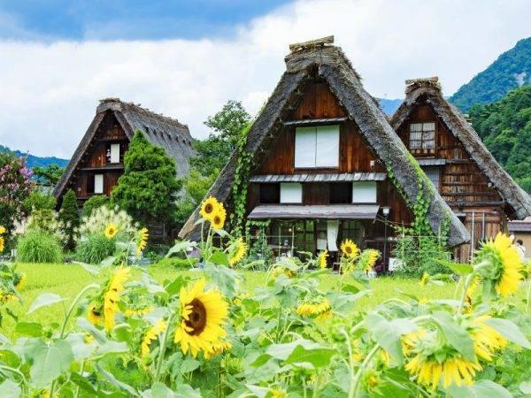 Lo Mejor de Japón - Shirakawago