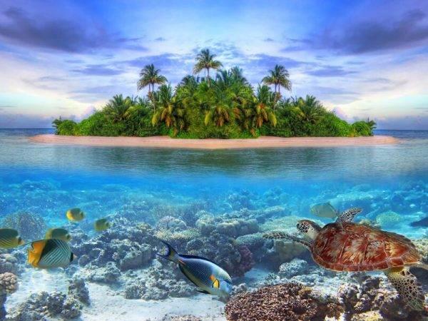 Combinados Maldivas - Viaje a Sri Lanka y Maldivas - India y Maldivas