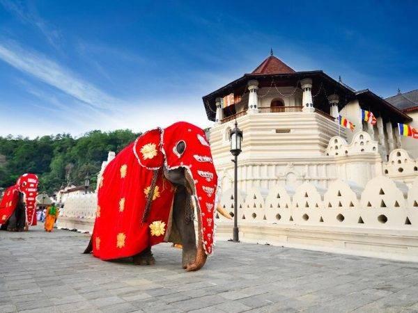 viajes sri lanka y maldivas - templo diente de buda