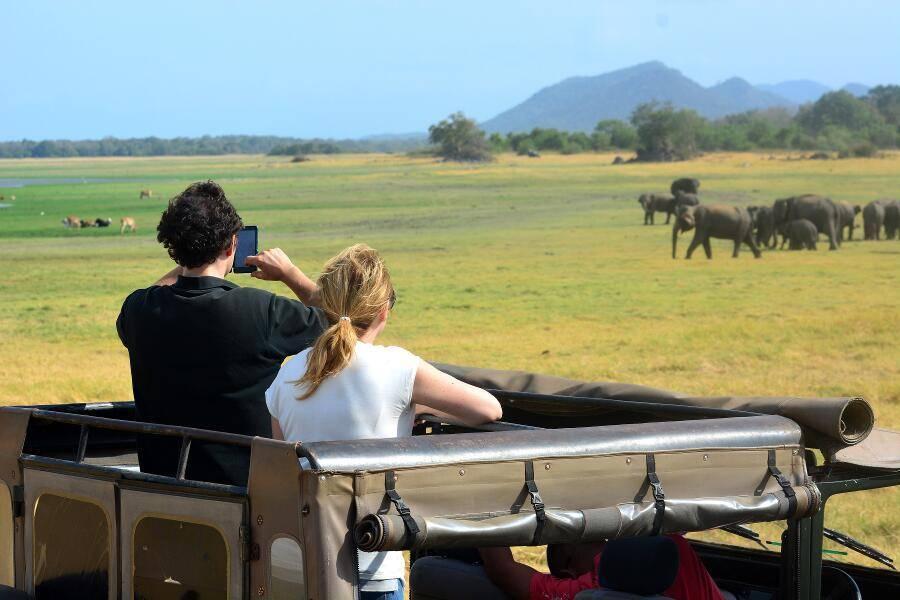 Viajes a Sri Lanka - Que ver en Sri Lanka - Minneriya Parque elefantes