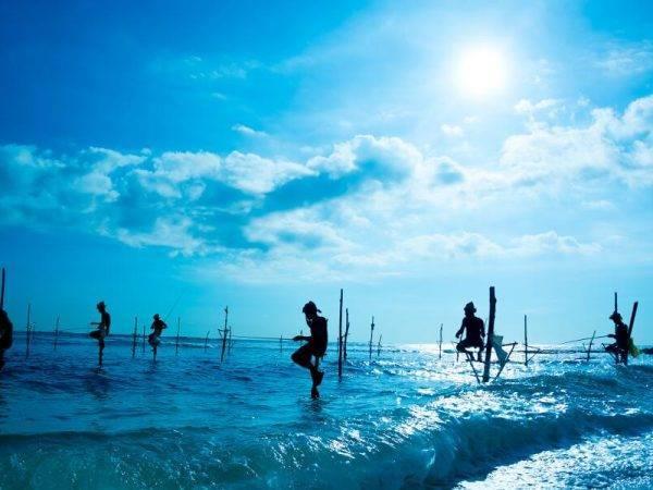 Sri Lanka de Norte a Sur - Pescadores zancudos