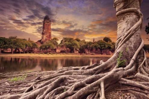 Que ver en Tailandia - Ayutthaya Centro arqueológico