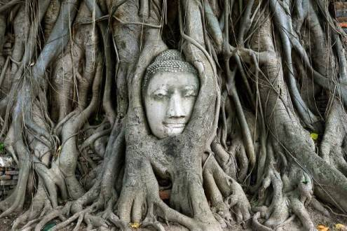 Tailandia al completo - Ayutthaya