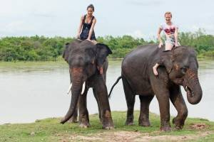 Tailandia de Norte a Sur - Safari en elefantes
