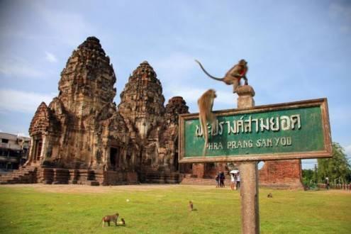 Que ver en Tailandia - Templo de los monos