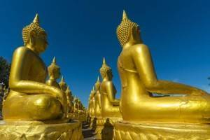 Viajes a vietnam - Que ver en Vietnam - Delta del Mekong Buda