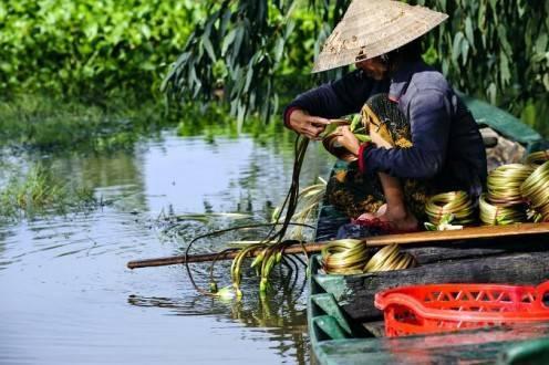 Que ver en Sri Lanka - Delta Mekong