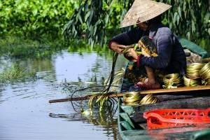 Viajes a Vietnam - Que ver en Vietnam