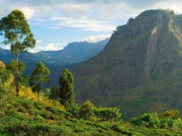Viajes a Sri Lanka - Que ver en Sri Lanka - Knuckles