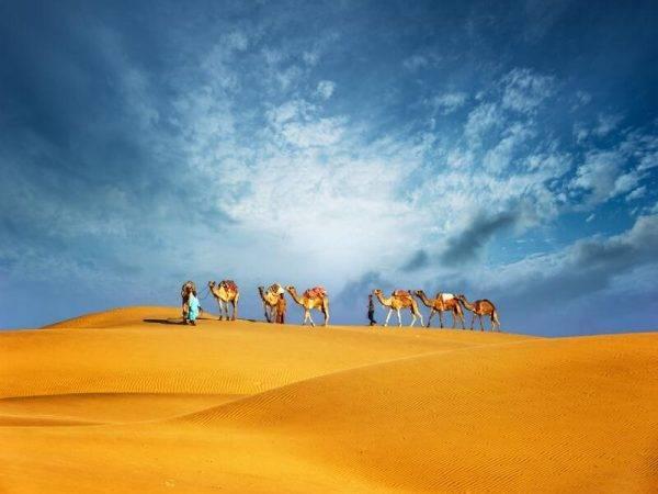 Dubai, Sri Lanka y Maldivas - Parque nacional de Minneriya