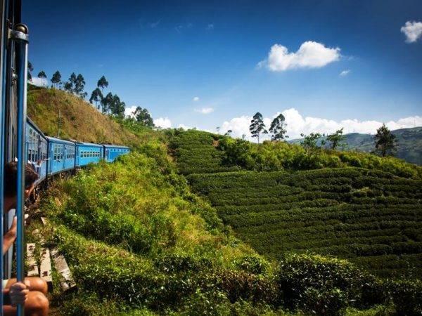 Viajes Sri Lanka - Nuwara Eliya - Tren Panoramico