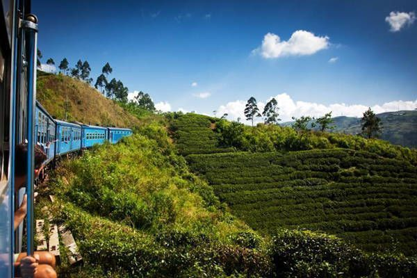 tren panorámico tierras altas sri lanka