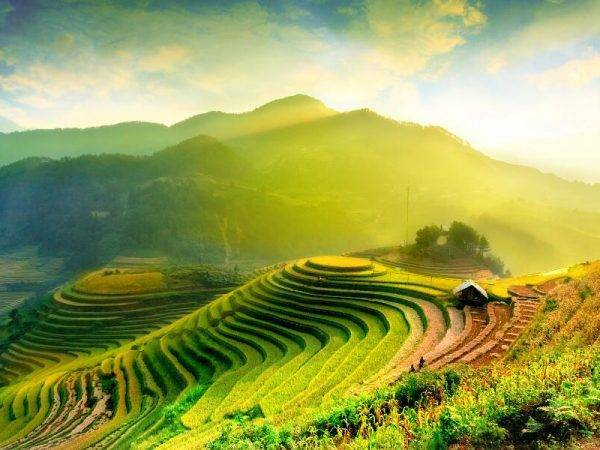 Vietnam Sapa - Halong