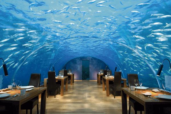 restaurante submarino maldivas