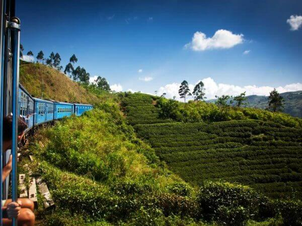 Sri Lanka verano -Tren Panorámico