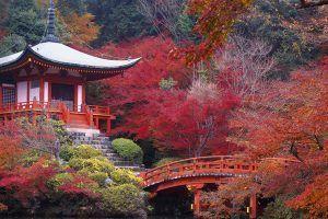 Viaja al Japón tradicional con Sildavia