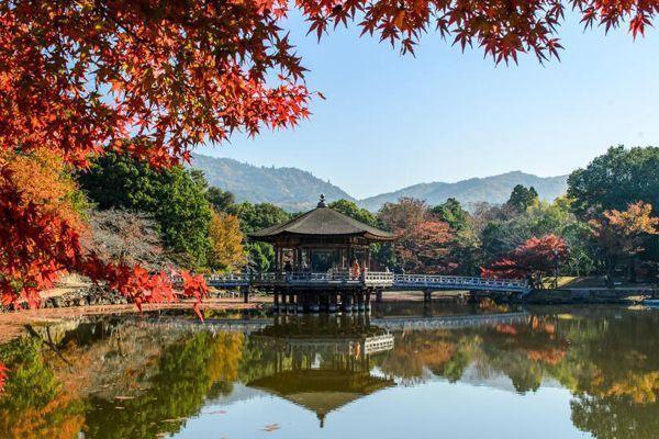 Viajar Nara