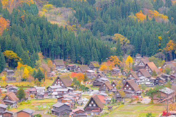 Viajar Shirakawago