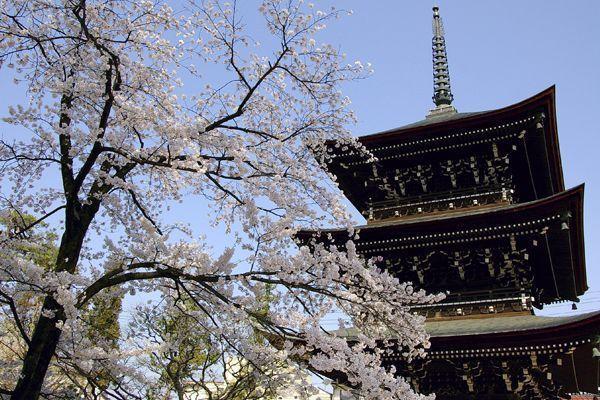 Viajar Takayama Kokubunji