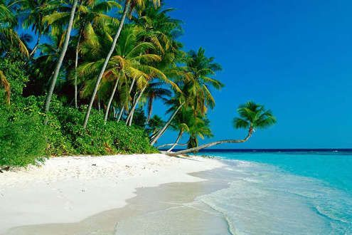 Lo mejor de Sri Lanka con playas del este