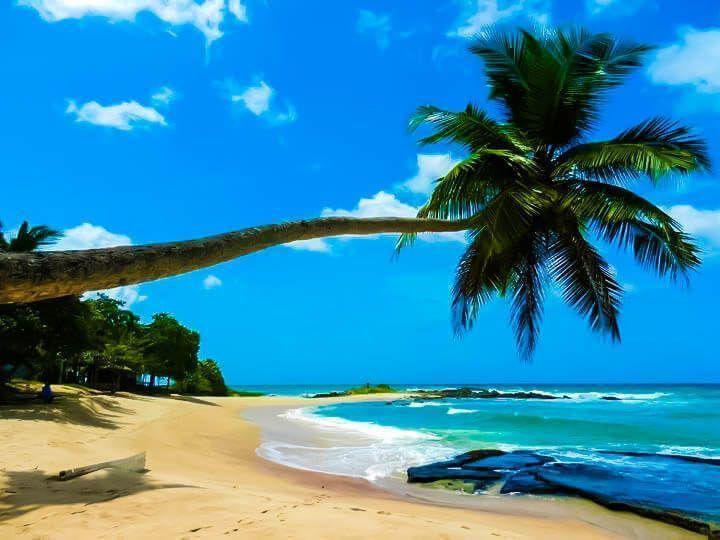 curiosidades de sri lanka playas