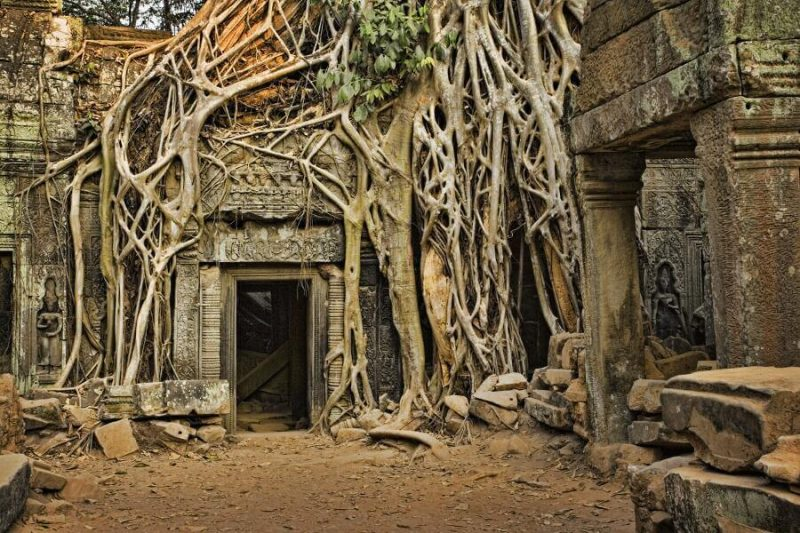 Templo Angkor Camboya