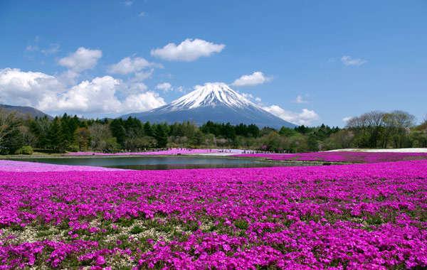 mejor epoca para viajar a japon Monte Fuji