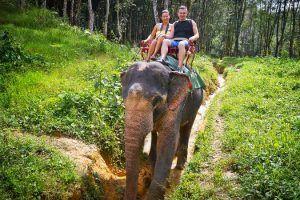 Viajes a Tailandia - Chiang Mai - Safari en elefante