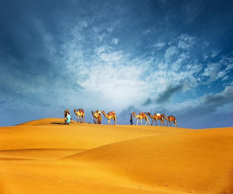 viajes-emiratos-01_800x600
