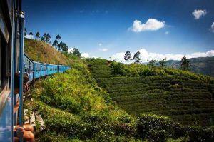 Tren panoramico Sri Lanka