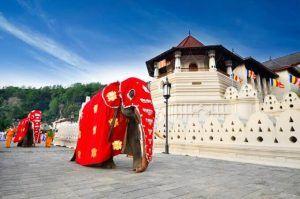 viajar sri lanka -Templo diente de Buda