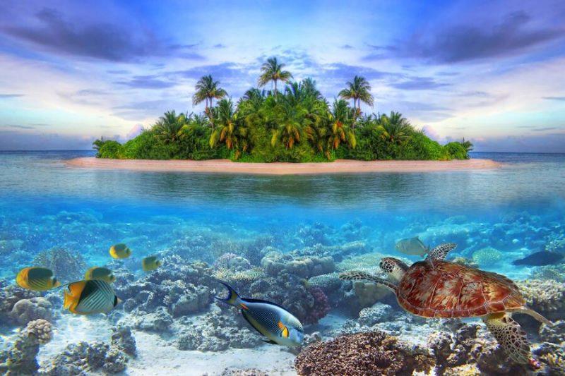 viajes-maldivas_7_800x600