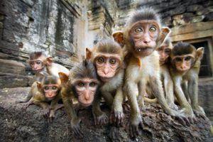9 platos imperdibles si viajas a Tailandia
