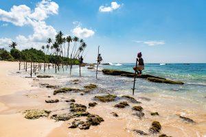 ¿Por qué Sri Lanka en invierno?