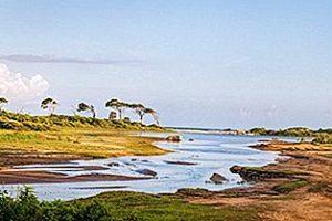 Biodiversidad del Parque Nacional de Yala en Sri Lanka