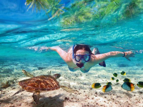 sun aqua_vilu-reef