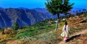 India-Dia-Mundial-del-MA-ONU-Medio-Ambiente